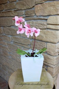 Orchidee aus Blütenpaste und der Topf ist die Torte